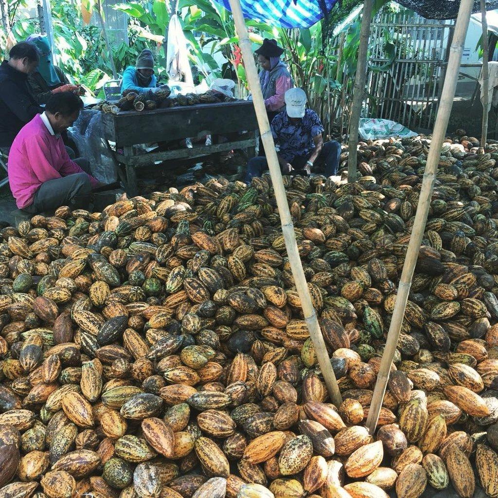 Siamaya Chocolate 85% Coated Almonds 100gr