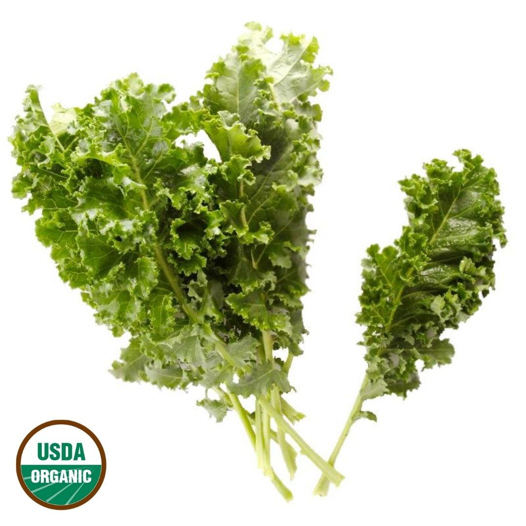 Organic Blue Scotch Kale
